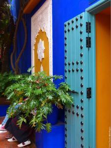 Marrakech - Jardins de Majorelle (13)