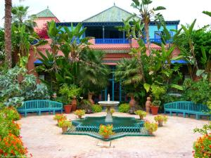 Marrakech - Jardins de Majorelle (24)