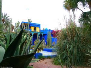 Marrakech - Jardins de Majorelle (28)