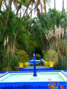 Marrakech - Jardins de Majorelle (29)