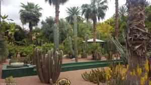 Marrakech - Jardins de Majorelle (3)