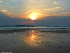 sunset 2 (5)